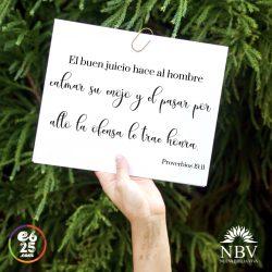 Proverbios19.11