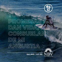 Salmo11950