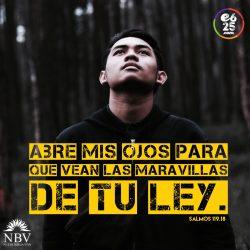 Salmos119.18