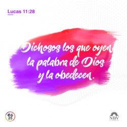 lucas_11_28