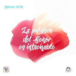 salmos_18_30